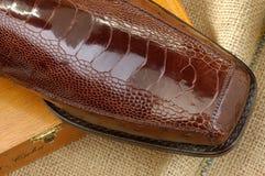 41 роскошный ботинок Стоковое Изображение RF