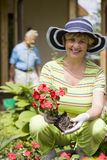 42 lyckliga förälskelsepensionärår Arkivfoton