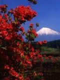 434 fuji mt Стоковое Фото