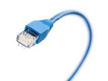 45连接数网络插件rj 免版税库存图片