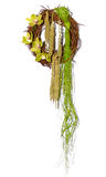 46 цветков Стоковые Фото