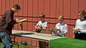 Free 4H Kids Chicken Judging At County Fa Royalty Free Stock Images - 26627489