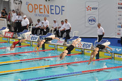 4th Edition Open EDF de Natation Paris 2010. Female swimmers diving into swimming pool for final race Royalty Free Stock Photo