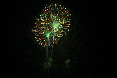 4th of July fireworks. Stock Photos
