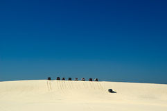 4WD Driving. In Sand Dunes stock photos