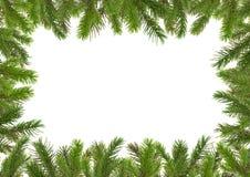 5个分行圣诞节结构结构树 库存图片