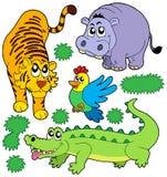 5个动物收集动物园