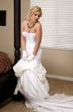 5个新娘脱衣舞 库存图片