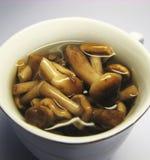 5个用卤汁泡的蘑菇 库存照片