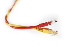 5个电缆猫lan红色电汇黄色 免版税库存照片