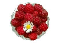 5个莓 免版税图库摄影