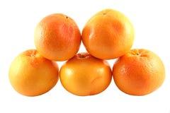 5个葡萄柚 免版税库存照片