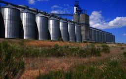 5个谷物爱达荷生产者 免版税图库摄影