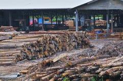 5个锯木厂系列木材 免版税库存照片
