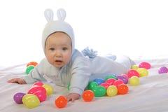 5兔宝宝 免版税库存图片