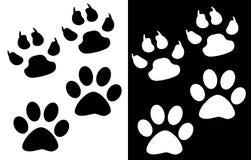 5动物脚 免版税库存图片
