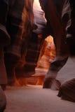 5只羚羊峡谷 库存图片