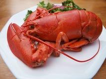 5只龙虾膳食 免版税库存图片