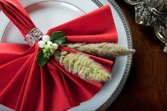5圣诞节欢乐餐巾 免版税图库摄影