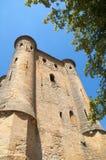 5城堡的主楼 免版税库存照片