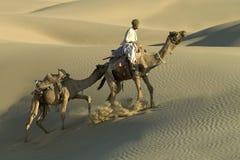5头骆驼有蓬卡车印地安人 免版税库存图片
