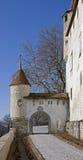 5座城堡门 库存图片