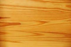 5木的背景 库存照片