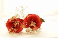 5朵杂种玫瑰 图库摄影