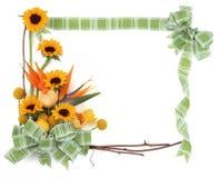5朵花框架 免版税库存图片