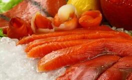 5条鱼 免版税图库摄影