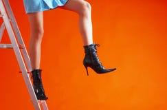 5架梯子妇女 免版税库存图片