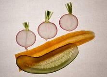 5棵蔬菜 库存图片