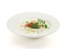 5汤蔬菜 免版税图库摄影