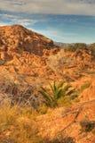 5片沙漠山 免版税库存照片