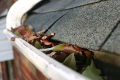 5片清理秋天天沟叶子 库存图片