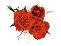 5花卉圣象徽标 库存图片