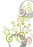 5花卉 库存图片