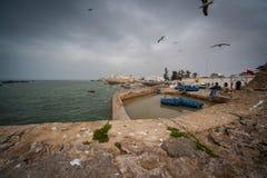 5颗城市essaouira摩洛哥老葡萄牙 免版税库存照片