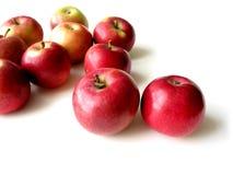 5 äpplen Arkivfoton