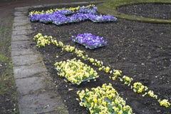 5 άνοιξη κηπουρικής Στοκ φωτογραφία με δικαίωμα ελεύθερης χρήσης