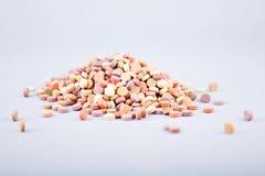 5 ζωηρόχρωμα βοτανικά χάπια Στοκ Εικόνες
