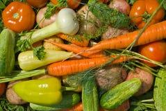 5 λαχανικά σωρών Στοκ Εικόνες