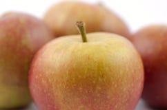 5 μήλα COX s στοκ εικόνα με δικαίωμα ελεύθερης χρήσης