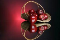 5 σειρές μήλων Στοκ εικόνες με δικαίωμα ελεύθερης χρήσης