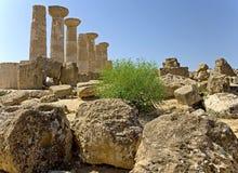 5 античных руин Стоковые Изображения RF