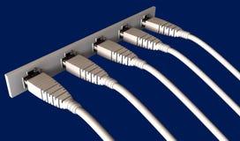 5 кабелей локальных сетей заткнули в гнездо Стоковая Фотография