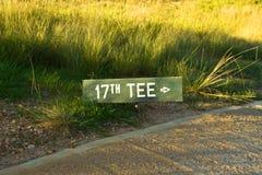5条路线高尔夫球插孔 免版税库存图片