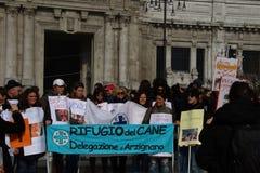 5/3/2011 Mailand-- Corteo Staatsangehöriger antivivisection Lizenzfreies Stockfoto