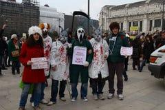 5/3/2011 Mailand-- Corteo Staatsangehöriger antivivisection Stockfotografie