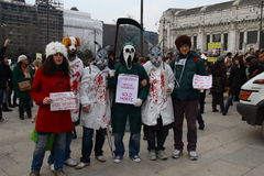 5/3/2011 Milano - Corteo national antivivisection Stock Photography